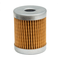RIETSCHLE FILTER (INTAKE)